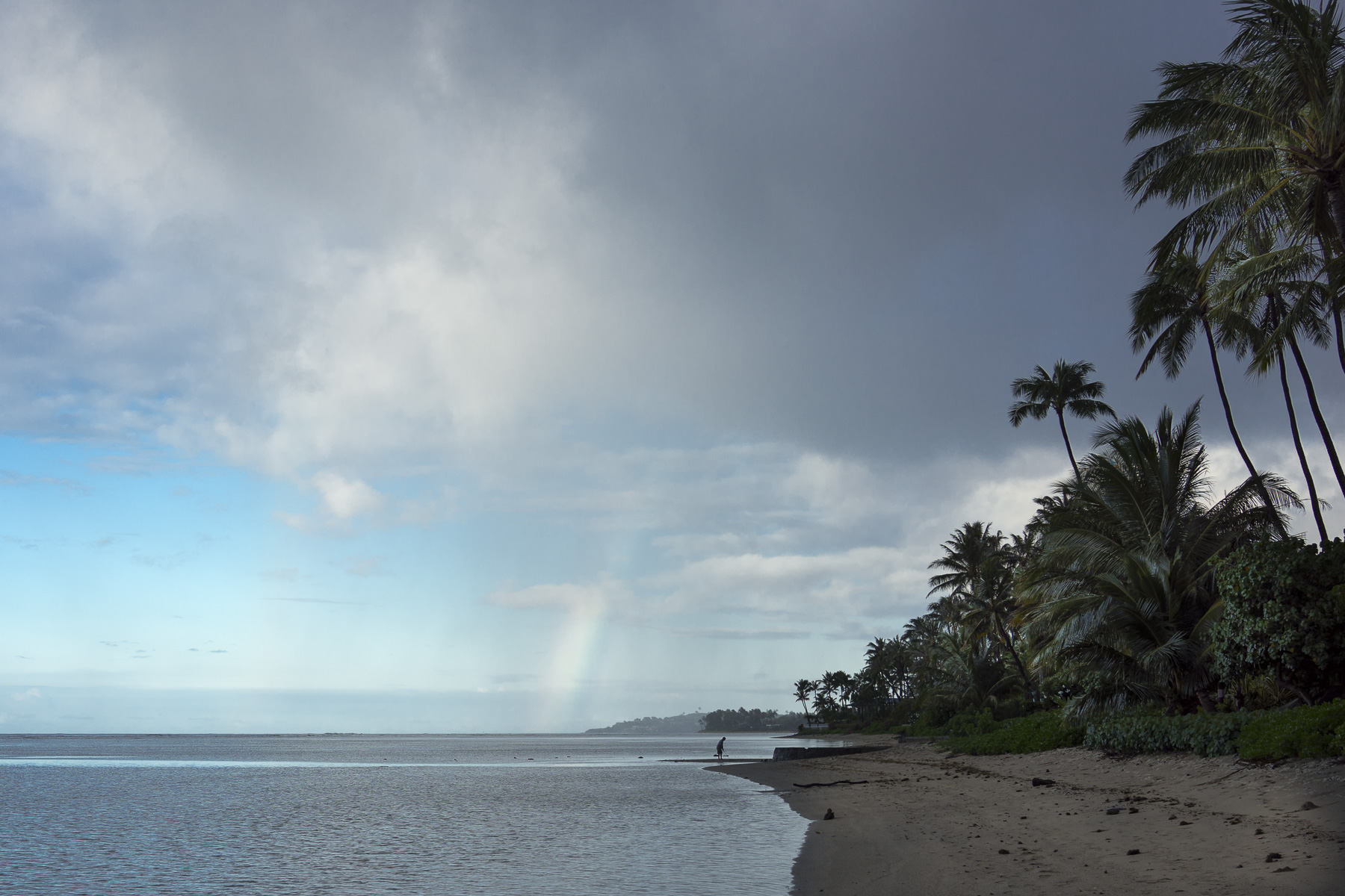 Today in Kahala